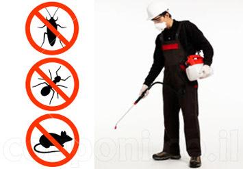 הדברה נגד חרקים ומזיקים ל3 חדרים ב135 ש