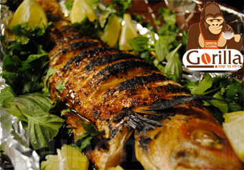 קפה גורילה הכשר מזמין אתכם לארוחה הכוללת מנת דג מושט שלם + ת...