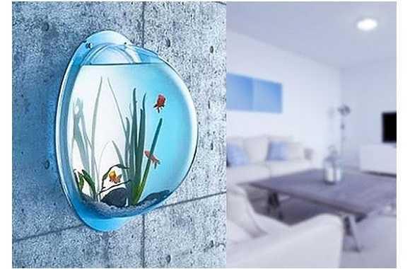 אקווריום קיר לקישוט הבית או המשרד! יפה ומהנה גם למבוגרים וגם לילדים! גם לדגים וגם לצמחייה רק ב44 ש