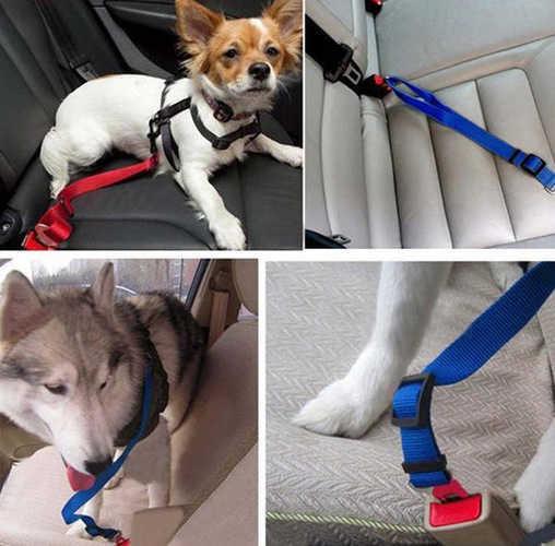 חגורת בטיחות לכלב מותאמת במיוחד לרכב, להגנה על חיית המחמד שלך בזמן הנסיעה ב25 ש
